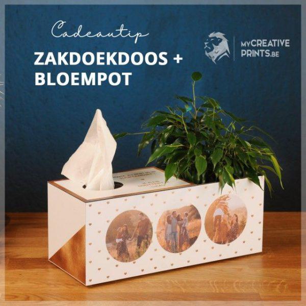 Zakdoekdoos + bloempot